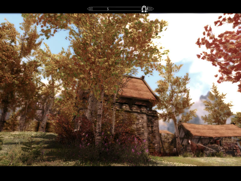 Флора Тамриэля - деревья / Tamriel Reloaded Trees 2.1 для TES V: Skyrim - Скриншот 2