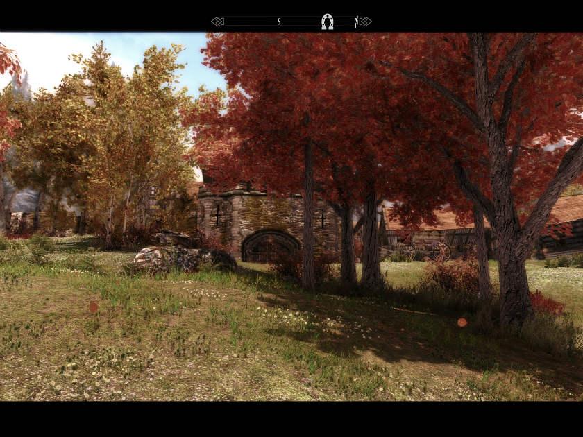 Флора Тамриэля - деревья / Tamriel Reloaded Trees 2.1 для TES V: Skyrim - Скриншот 3