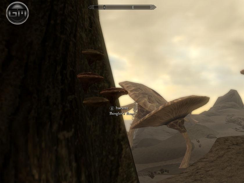 Солстейм - Затерянные равнины / Solstheim – The Lost Levels 1.3a для TES V: Skyrim - Скриншот 3