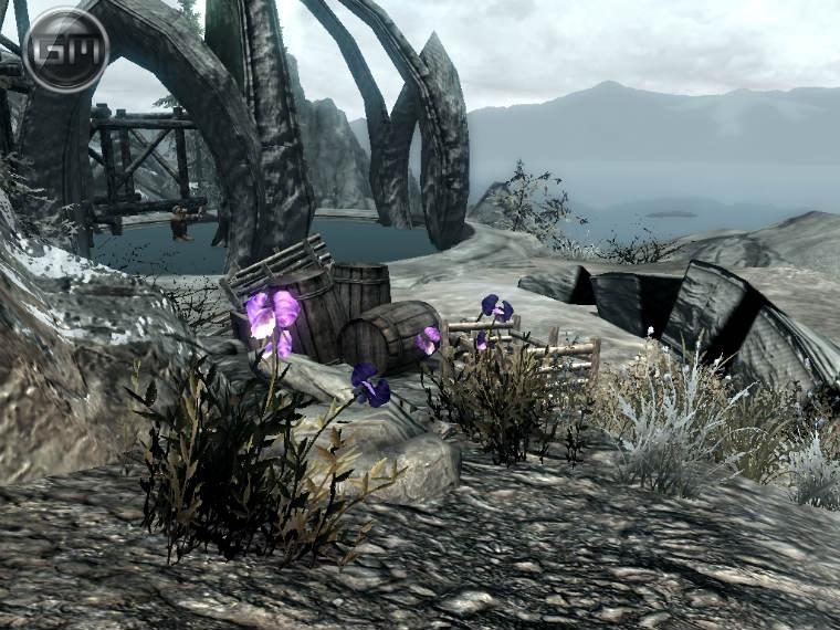 Солстейм - Затерянные равнины / Solstheim – The Lost Levels 1.3a для TES V: Skyrim - Скриншот 1