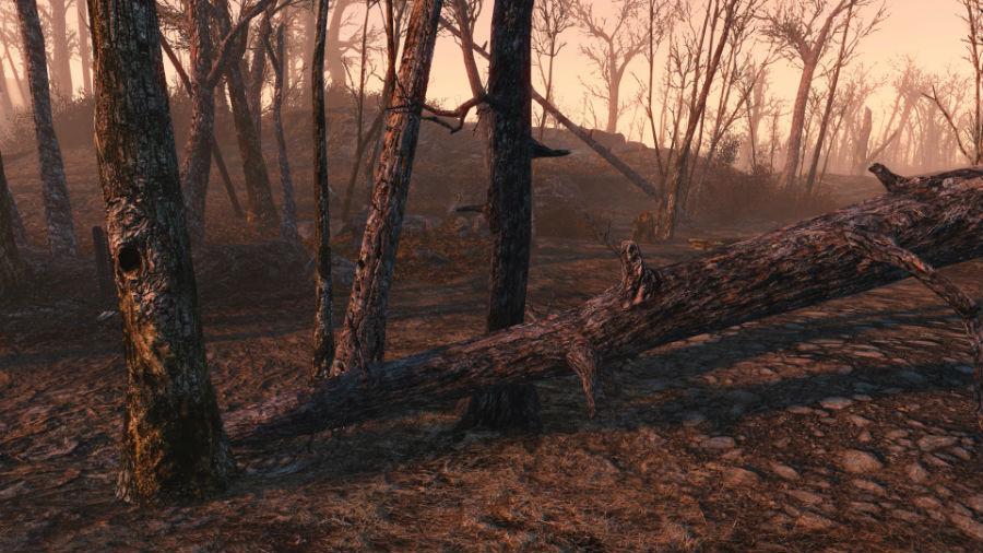 Fallout 4 мод на Деревья